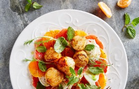 Image for 'Clemengold and scallop salad'